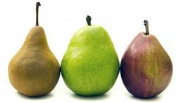 La poire, le fruit santé de votre automne