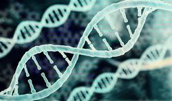 Wat is de 'genetische schaar' die de Nobelprijs opleverde?