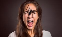 Piqûre d'araignée ? C'est très peu probable…