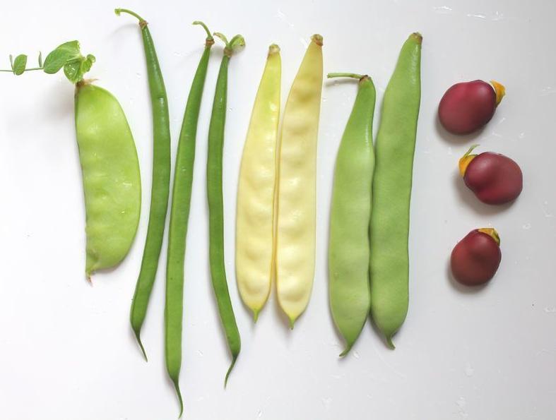 123-HD-groenten-kh-dieet-09-18.jpg
