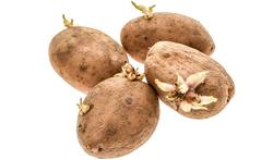 Wit brood en aardappelen slecht voor acne