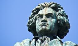 Surdité de Beethoven : la piste du vin