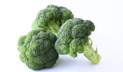 Coeur et cerveau : les bienfaits du brocoli et du chou