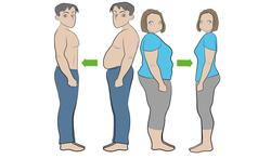 Maagverkleining door obesitaschirurgie of bariatrische heelkunde: de verschillende technieken