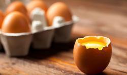 Manger des œufs tous les jours : aucun risque pour la santé