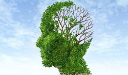 Netwerk voor patiëntgericht dementieonderzoek
