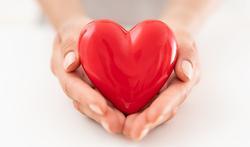 Pathologies cardiaques : au cœur du problème
