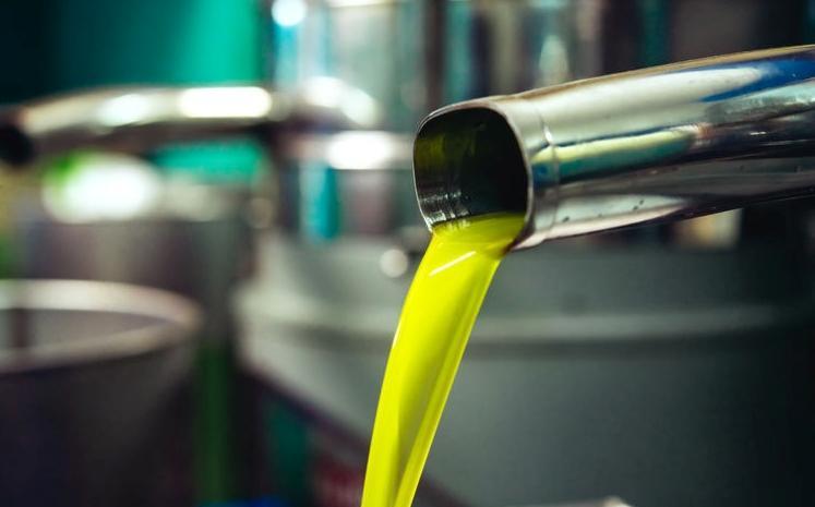 123-h-olijfolie-03-20.jpg