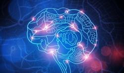 Pourquoi les champignons sont-ils devenus hallucinogènes ?