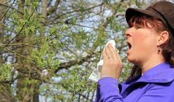 Allergie au pollen : quels symptômes ?