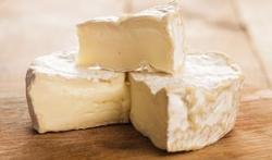Vidéo - Le fromage, délicieusement... pourri