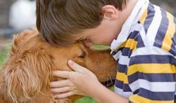 Trouble du langage : comment le chien peut aider l'enfant