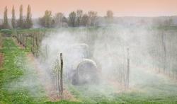 Weinig pesticiden in voeding