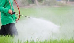 Pesticides : la polémique