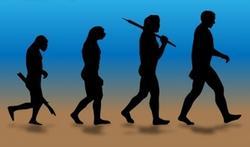 123-mens-evolutie-prehis-170-9.jpg