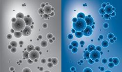 Notre « nuage » de microbes : une signature personnelle unique