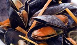 Cholestérol : peut-on manger des moules ?