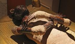 Vidéo - Les momies au scanner