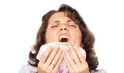 Allergie aux acariens : les symptômes et le diagnostic