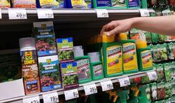Onkruidverdelger glyfosaat niet kankerverwekkend