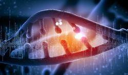 Vidéo - Cellules, protéines et ADN