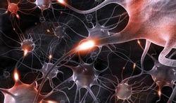 Départ à la retraite : le cerveau n'est pas pressé