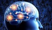 123-p-hersenen-crativiteit-170-3.jpg