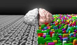 123-p-hersenen-creatief-170-7.jpg