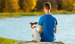 Les incroyables pouvoirs de nos animaux de compagnie