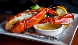 Le homard fait-il grossir ?