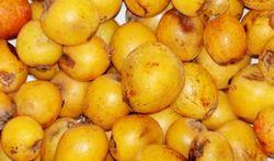 La nèfle, un fruit à redécouvrir