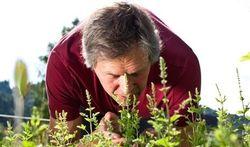 Un test des odeurs pour détecter Alzheimer ?