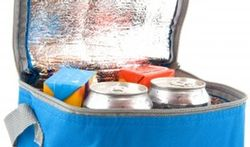 Comment bien remplir son frigobox ?