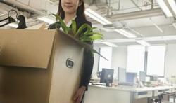 Planten in kantoren en zorginstellingen: kostenpost of kostenbesparing?