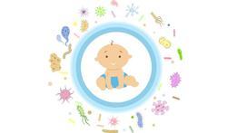 Immuunsysteem voor geboorte al volwassener dan gedacht