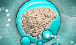 Comment le cerveau fonctionne quand on dort