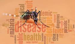 Meer Belgische reizigers met malaria