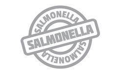 Voorkom Salmonellabesmetting