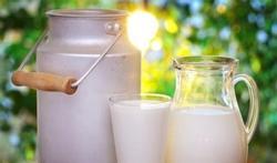 Bouteille de lait : que dit la couleur du bouchon ?