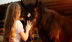 Paardentherapie: spiegelen van emoties