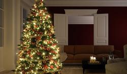 6 tips voor een veilige kerstboom