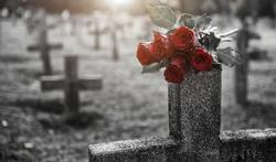 Plus d'un an après la mort, le corps bouge encore