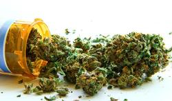 Seniors : le cannabis efficace contre la douleur