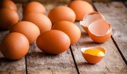 123m-eieren-22-9-20.jpg
