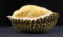 123m-fruit-durian-27-11-19.jpg