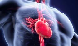 Diabète : la menace majeure de l'insuffisance cardiaque
