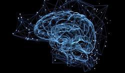 Apnées du sommeil : le cerveau vieillit plus vite