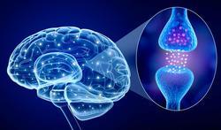 Alzheimer : connaissez-vous l'anosognosie ?