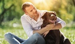 Hypertension : le chien protège son maître