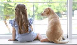 Allergie de l'enfant : l'étonnante protection du chien